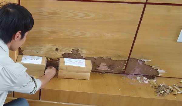 Dịch vụ diệt mối - Đặt hộp nhử mối