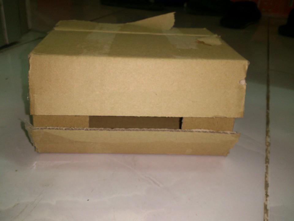 Sử dụng hộp nhử mối