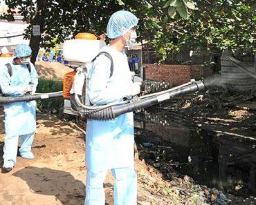 Địa chỉ phun thuốc muỗi uy tín tại Hà Nội