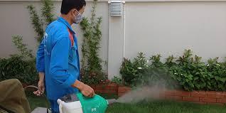 Địa chỉ phun thuốc muỗi hiệu quả tại Hà Nội