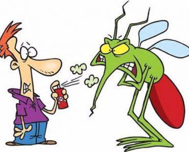 Dịch vụ diệt côn trùng chất lượng tại quận Hoàng Mai