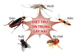 cong-ty-diet-con-trung-uy-tin-tai-ha-noi