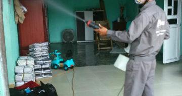 Phun thuốc diệt rệp, bọ chét tại nhà