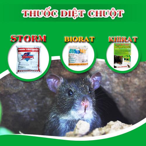 diet-chuot-cong-hieu-qua