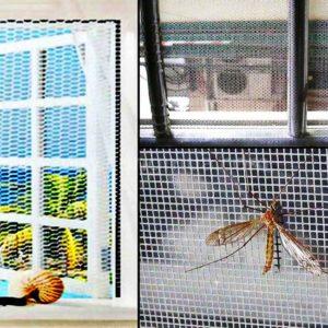 Thông tin chi tiết về cửa lưới chống côn trùng trên thị trường