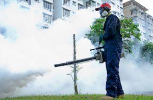công ty diệt côn trùng tại quận Cầu Giấy