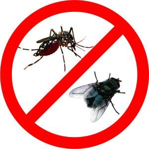 công ty diệt côn trùng tại quận Đống Đa