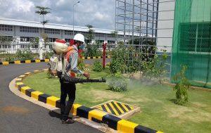 công ty diệt côn trùng tại quận Hoàng Mai