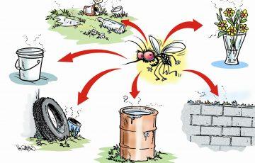 công ty diệt muỗi tại Hồ Chí Minh