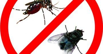 công ty diệt ruồi muỗi tại Hà Giang
