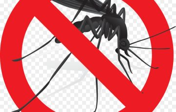 công ty diệt ruồi muỗi tại Hà Nam