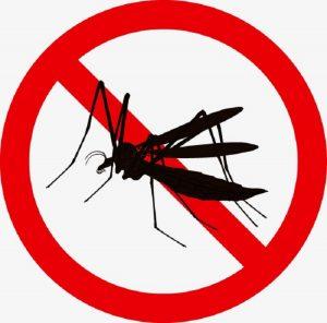công ty diệt ruồi muỗi tại Hậu Giang