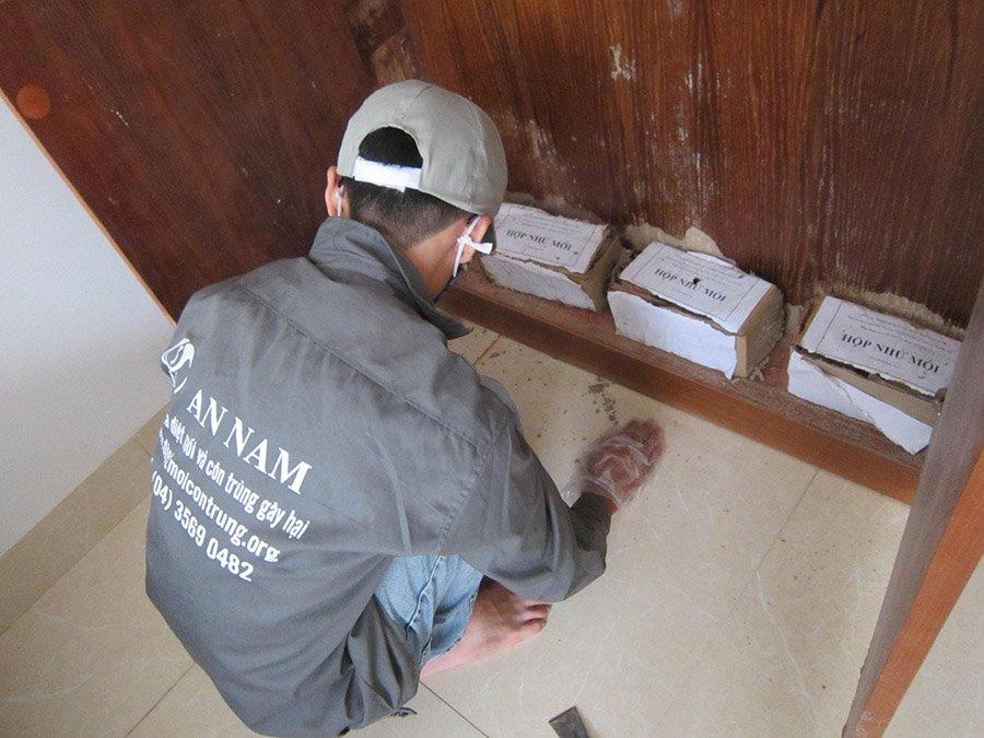 Dịch vụ diệt côn trùng An Nam