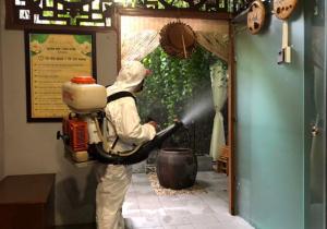 Cách phun thuốc muỗi