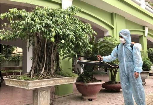 Cách phun thuốc muỗi không độc hại