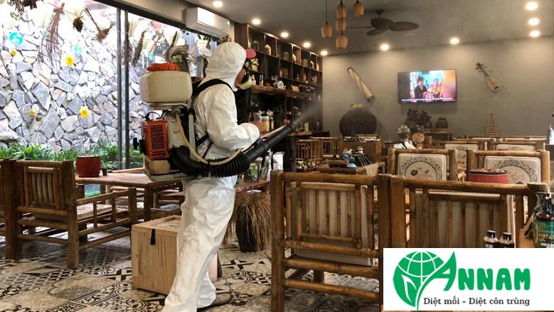 Dịch vụ phun thuốc muỗi tại nhà uy tín