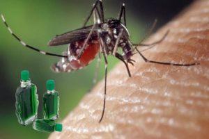Diệt muỗi bằng dầu gió